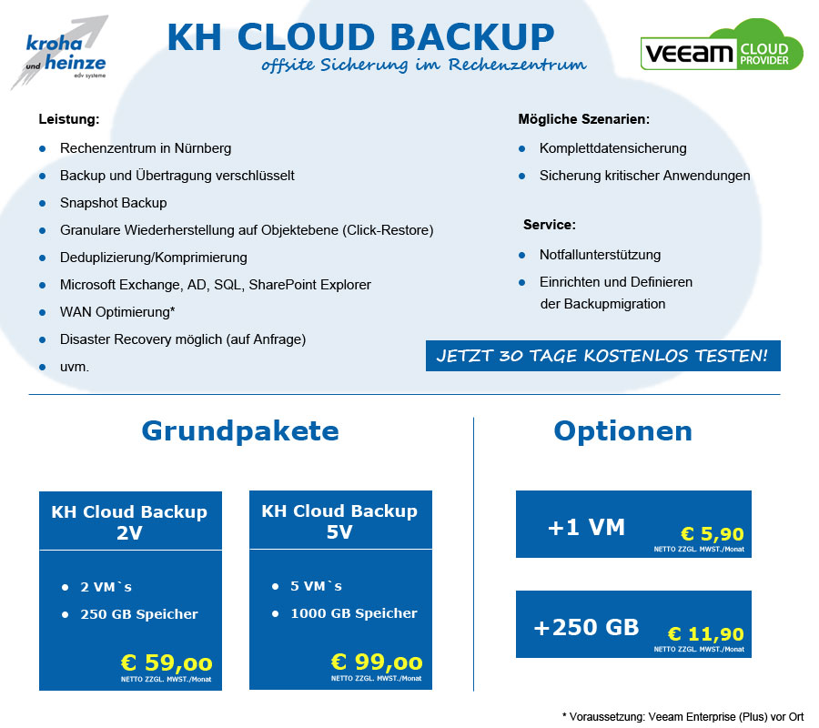 Flyer Cloud Backup